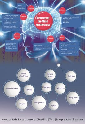 Alchemy of the Mind Infographic