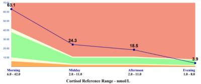 Cortisol Test Result